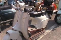 El DI Dea Lambretta 2011 0354
